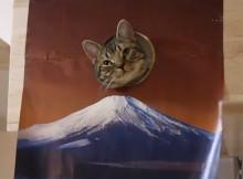 【はめ猫】世界遺産 富士山だ!/Mount Fuji で顔ハメ