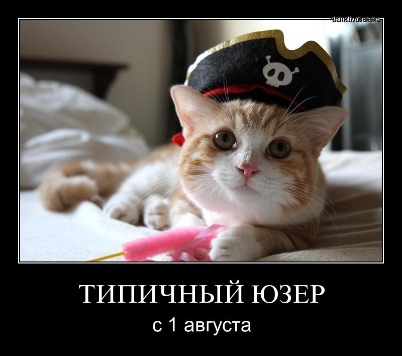ロシアのサイトで菊さん発見Σ(゚ω゚)無断転載いくない!