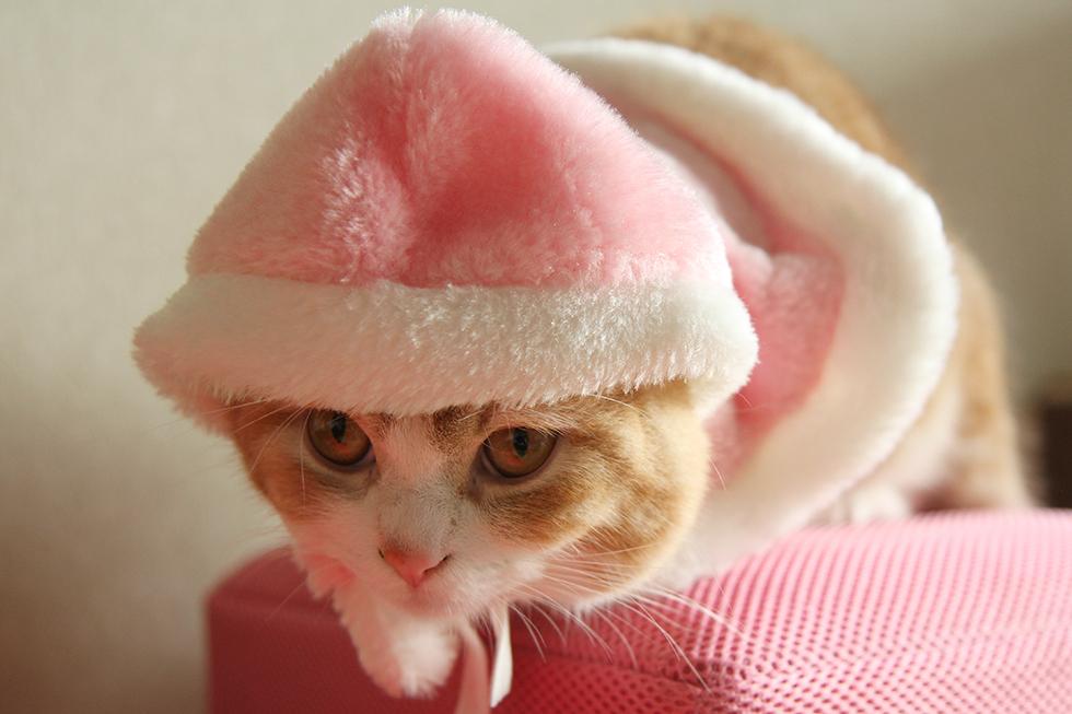ぴったりなふわふわピンクずきん帽子