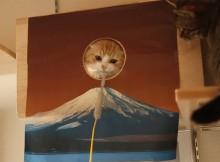 富士山付近でじゃれるねこ。キャットウォークで遊ぶ