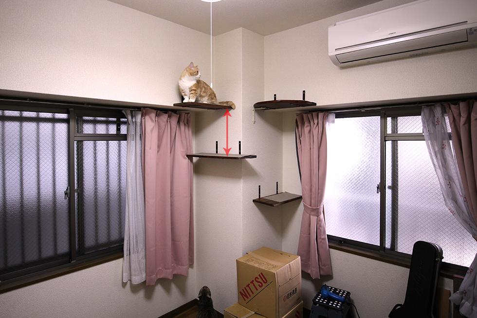 棚と棚の高さ(矢印)は約35cmです