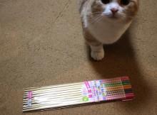 玄関脱走防止アコーディオンカーテン自作改良の切り札の菜箸
