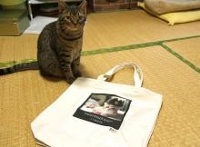 『UTme!マーケット』マンチカン菊之助トートバック購入しました。