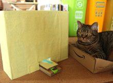 太り気味の猫さんの体力測定に、猫パンチ回数測定マシンを作ってみた