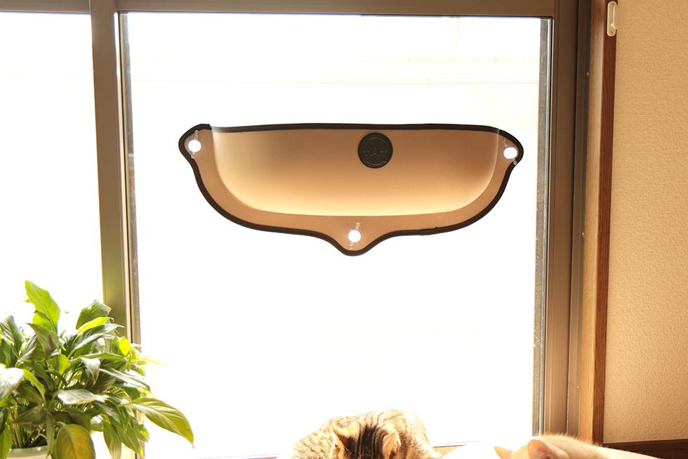 吸盤で窓ガラスに取り付ける簡易猫ベット。イージーマウント ウィンドウベッドを設置