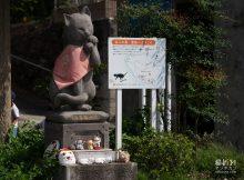 猫折れふらりネコ歩き湯島編