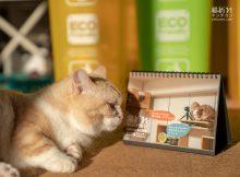 猫折れ2019卓上カレンダー今年もやってまいります